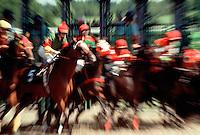 Thoroughbred horses break from the starting gate