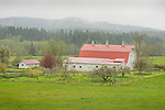 Orcus Island. Barn in foggy spring weather.