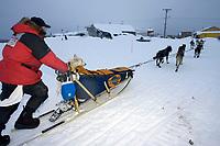 Doug Swingley Runs Up Bank of Yukon River @ Kaltag Chkpt 2005 Iditarod w/Dog in Basket *Nellie*