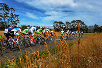 The peleton rides up Upper Plain Rd during stage five of the NZ Cycle Classic UCI Oceania Tour in Masterton, New Zealand on Tuesday, 26 January 2017. Photo: Dave Lintott / lintottphoto.co.nz