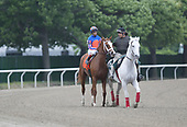 Rags to Riches wins Belmont Stakes