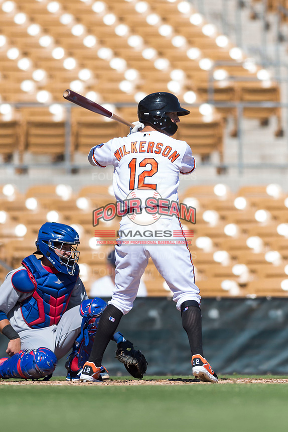 Glendale Desert Dogs third baseman Steve Wilkerson (12), of the Baltimore Orioles organization, at bat in front of catcher P.J. Higgins (12) during an Arizona Fall League game against the Mesa Solar Sox at Camelback Ranch on October 15, 2018 in Glendale, Arizona. Mesa defeated Glendale 8-0. (Zachary Lucy/Four Seam Images)