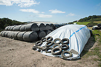 An Ag-bag of silage with big baled silage, Isle of Man.