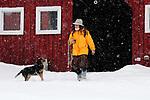 Winter 2011 Springdale Farm Annie Galanda