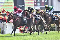 10 December 2017, Hong Kong - Nash Rawiller on the John Size trained MR STUNNING (1) wins Race 5, The Longines Hong Kong Sprint at Sha Tin Racecourse Hong Kong. Photo Sydney Low