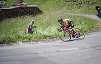 Richie Porte (AUS/BMC) trying to minimise losing time descending the Col de la Colombière<br /> <br /> 69th Critérium du Dauphiné 2017<br /> Stage 8: Albertville > Plateau de Solaison (115km)