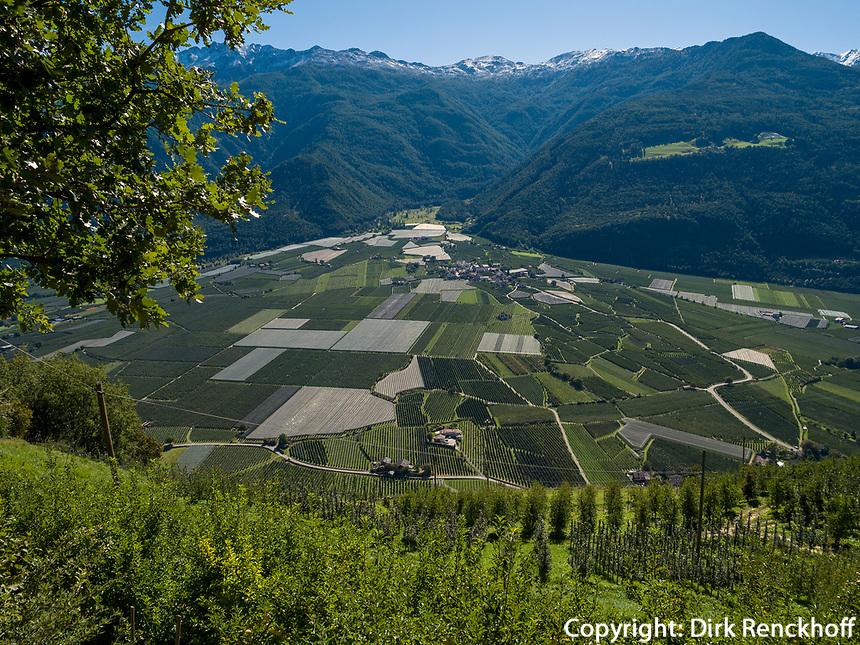 Etsch-Tal bei Kastelbell-Tschars, Vinschgau, Region Südtirol-Bozen, Italien, Europa<br /> Adige valley near Kastelbell-Tschars, Vinschgau, Region South Tyrol-Bolzano, Italy, Europe