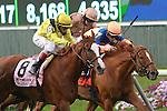 Nahrain (GB), ridden by John Velazquez, wins the Flower Bowl Invitation (GI) at Belmont Park in Elmont, New York on September 29, 2012