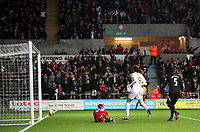 Barclays Premier League, Swansea City (White) V Norwich City (black) Liberty Stadium, Swansea, 08/12/12<br /> Pictured: Michu scores for Swansea<br /> Picture by: Ben Wyeth / Athena <br /> Athena Picture Agency<br /> info@athena-pictures.com