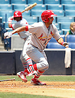 May 23, 2010  Outfielder Alex Castellanos of the Palm Beach Cardinals, Florida State League Class-A affiliate of the St.Louis Cardinals, during a game at George M. Steinbrenner Field in Tampa, FL. Photo by: Mark LoMoglio/Four Seam Images