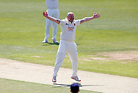 Darren Stevens of Kent appeals during Kent CCC vs Northamptonshire CCC, LV Insurance County Championship Group 3 Cricket at The Spitfire Ground on 3rd June 2021