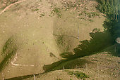 Para state, Brazil. Aerial, deforestation, dead trees and forest shadow.