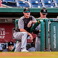 26 September 2018: Miami Marlins Catching Coach Brian Schneider watches play from the dugout during a game against the Washington Nationals at Nationals Park in Washington, DC. The Nationals defeated the visiting Marlins 9-3, closing out Washington's 2018 home season. Mandatory Credit: Ed Wolfstein Photo *** RAW (NEF) Image File Available ***