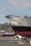 "Port Townsend, Port of Port Townsend, Boat Haven Marina, boat harbor, salmon packer, ""Robert S"", Jefferson County, Olympic Peninsula, Washington State, Pacific Northwest, USA,"