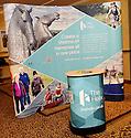 Social Enterprise Awareness Raising Event 2012 :  The Helix Stand ....