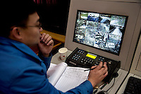 A researcher monitors camera feeds of wild pandas in their enclosures at the Hetaoping Panda Conservation Centre.