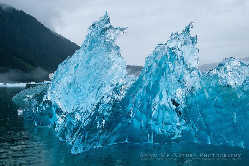 Iceberg in the waters of LeConte Glacier, Alaska