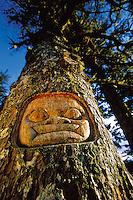 A Native Alaskan Tlingit tree carving. Alaska.