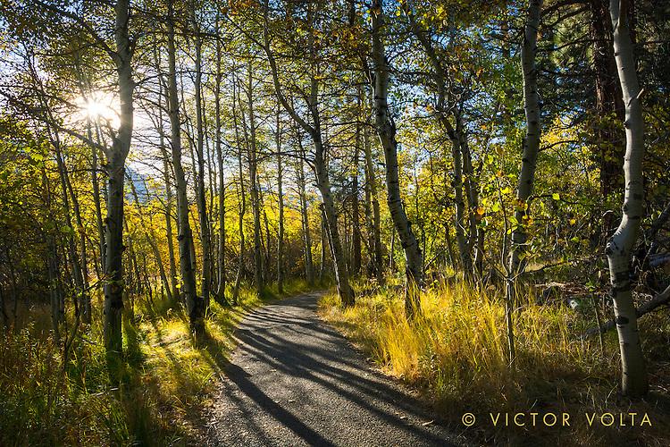 Rainbow Trail near Taylor Creek