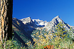 Trapper Peak and fall color in the Bitterroot Mountain Range in Montana