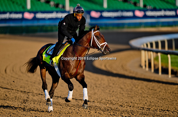 LOUISVILLE, KY - APRIL 30: Magnum Moon, trained by Todd Pletcher, exercises in preparation for the Kentucky Derby at Churchill Downs on April 30, 2018 in Louisville, Kentucky. (Photo by Scott Serio/Eclipse Sportswire/Getty Images)