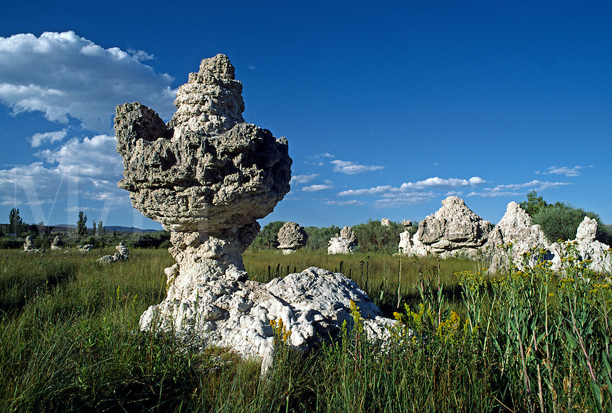 MONO LAKE with its mysterious TUFA TOWERS became a National Scenic Area in 1984 - EASTERN SIERRA