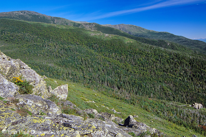 Looking across the Gulf of Slides at Boott Spur Mountain (left) from Glen Boulder Trail in Sargent's Purchase in the New Hampshire White Mountains.