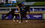 October 30, 2019: Breeders' Cup Distaff entrant Midnight Bisou, trained by Steven M. Asmussen, exercises in preparation for the Breeders' Cup World Championships at Santa Anita Park in Arcadia, California on October 30, 2019. Michael McInally/Eclipse Sportswire/Breeders' Cup/CSM