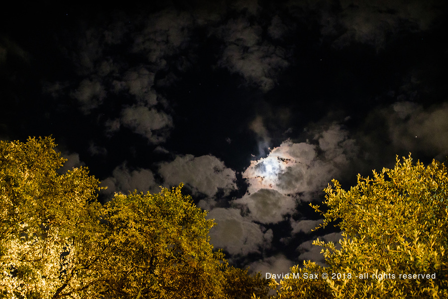 10.19.18 - The Sky at Night...