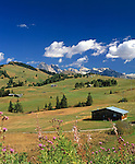 Italy, South Tyrol, Alto Adige, Dolomites, Alpe de Siusi with view at Odle Group