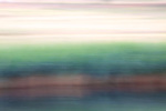 Abstract of pond and tall grasses