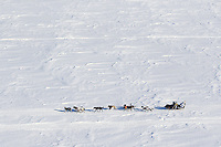 Martin Buser kicks back on his sled with his foot up as he travels over Golovin Bay on the way to the White Mountain checkpoint on Tuesday March 12, 2013...Iditarod Sled Dog Race 2013..Photo by Jeff Schultz copyright 2013 DO NOT REPRODUCE WITHOUT PERMISSION
