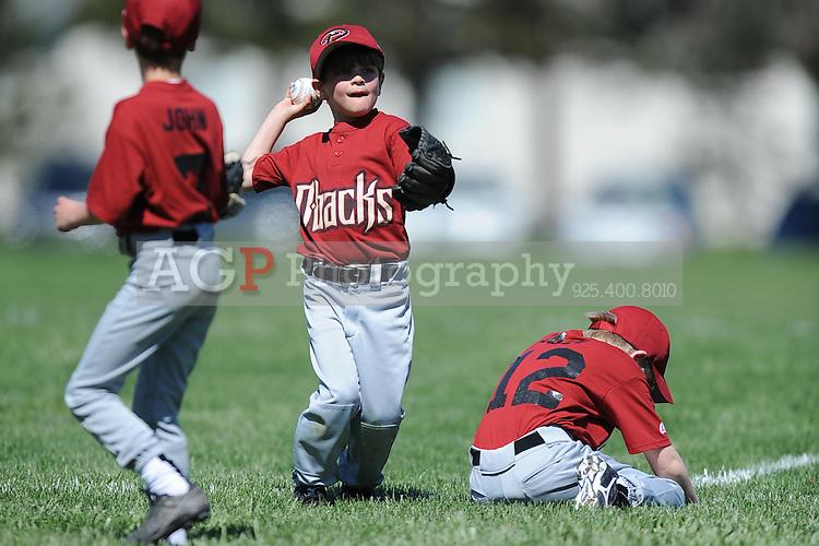 The Farm Diamondbacks of Pleasanton National Little League  March 28, 2009.