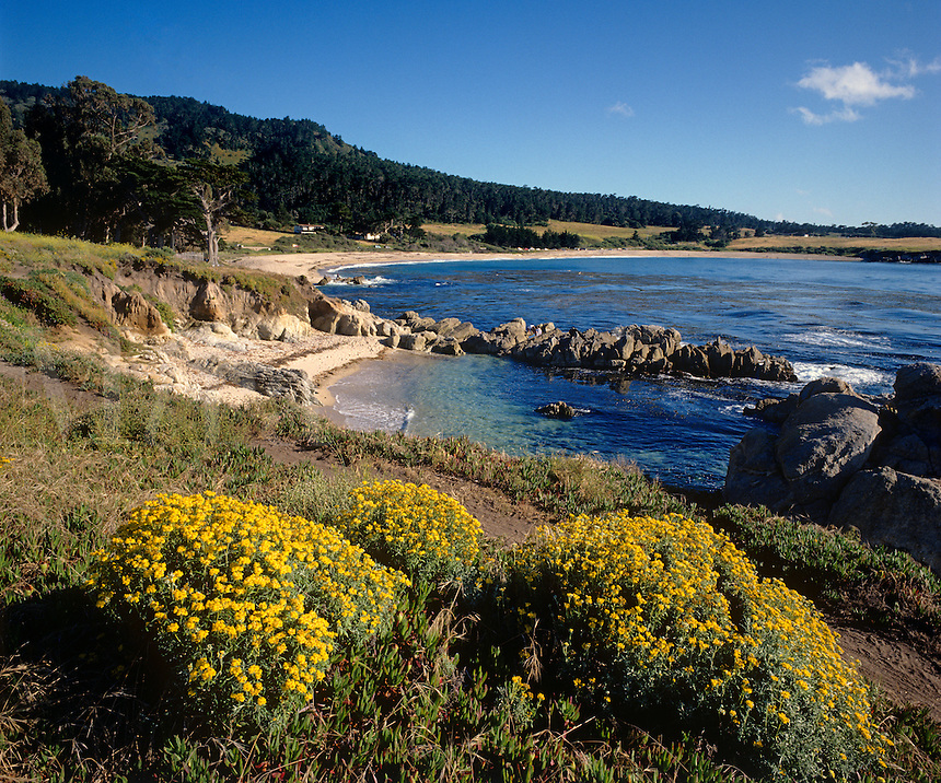 PACIFIC COAST LINE just north of Point Lobos State Park - CARMEL, CALIFORNIA