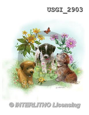 GIORDANO, CUTE ANIMALS, LUSTIGE TIERE, ANIMALITOS DIVERTIDOS, paintings+++++,USGI2903,#AC# ,dogs