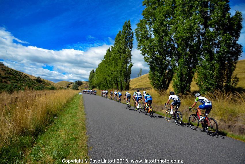 King of the Mountain - Miller Rd. UCI Oceania Tour - NZ Cycling Classic stage one - Masterton to Gladstone circuit in Wairarapa, New Zealand on Wednesday, 20 January 2016. Photo: Dave Lintott / lintottphoto.co.nz