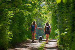 Deutschland, Bayern, Toelzer Land, Dietramszell: zwei junge Frauen mit Hund auf dem Weg  zum Waldweiher | Germany, Bavaria, Toelzer Land, Dietramszell: two young women and dog