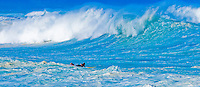 A lone female surfer braves the largest and rougest surf of the 2007-2008 big wave season on Oahu's north shore.