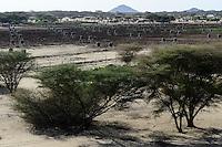 KENYA, Lodwar, 65 accres NAPUU drip irrigation scheme by the county government, the water is pumped by solar powered pump / KENIA Turkana, Lodwar, 30 ha grosse Farm mit Troepfchenbewaesserung, das Wasser wird mit Hilfe einer solar betriebenen Pumpe aus einem Brunnen gefoerdert und in Tanks zwischen gespeichert