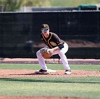 Blake Hunt - San Diego Padres 2020 spring training (Bill Mitchell)