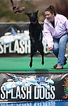 Splash Dogs 052811