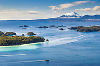 Commercial fishing vessels, Cape purse seiners position themselves in Sitka Sound for the first Herring Sac Roe fishery opener in 2006, southeast, Alaska. Inactive volcano Mount Edgecumbe in the distance. Herring spawn colors the near shore waters an aqua blue.