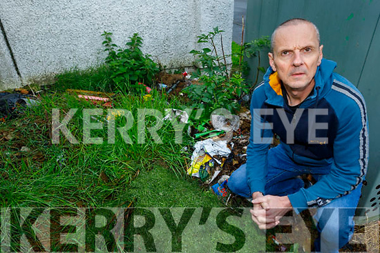 Cllr: Tom Barry at the site in Feale Drive on Friday, where there's illegal dumping going on.