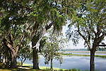 Live oaks draped with Spanish moss shade the grounds at Middleton Place Plantation (on the National Historic Register) in Charleston, SC