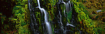Vibrant green moss surrounds a cascading waterfall in Iceland.