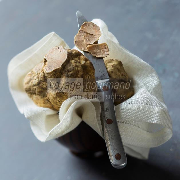 Europe, Italie, Piemont, Alba: Truffe blanche d'Alba, tuber magnatum pico  - Stylisme : Valérie Lhomme // Europe, Italy, Piedmont, Alba: Alba White truffle, tuber magnatum , Styling Valérie Lhomme -