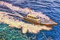 Pilot boat approaching the cruise ship.