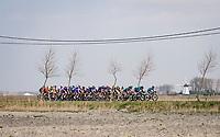 peloton rolling through De Moeren<br /> <br /> 45th Oxyclean Classic Brugge-De Panne 2021 (ME/1.UWT)<br /> 1 day race from Bruges to De Panne (204km)<br /> <br /> ©kramon