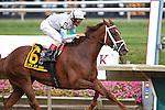 17 July 2010:  Life at Ten, John Velazquez up, wins the Delaware Handicap at Delaware Park, Stanton, DE.