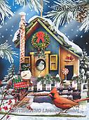 Lori, CHRISTMAS SYMBOLS, WEIHNACHTEN SYMBOLE, NAVIDAD SÍMBOLOS, paintings+++++Holiday Bird House_8_72_Sunsout_8_2017,USLS212,#xx#
